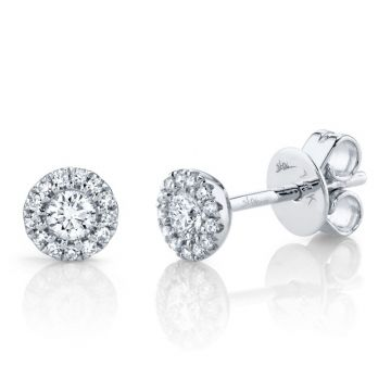 Shy Creation 14k White Gold Diamond Stud Earrings