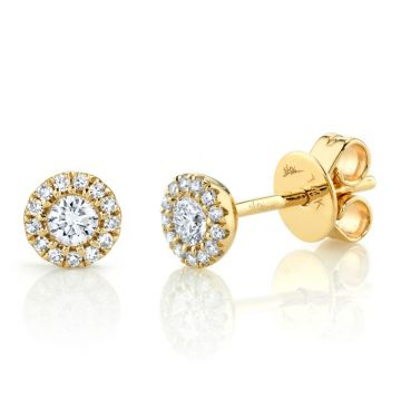 Shy Creation 14k Yellow Gold Diamond Stud Earrings